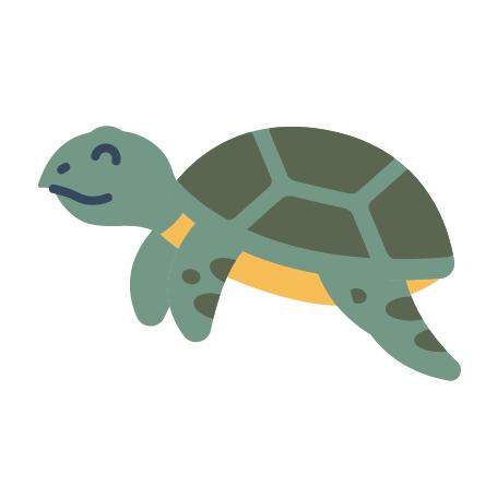 Tortoises and Turtles